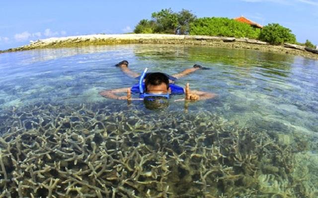 Pulau Biawak 5