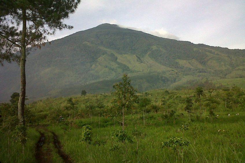 Taman Nasional Gunung Ciremai 1